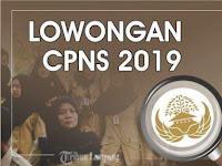 Resmi !! Pemerintah Buka Lowongan CPNS 2019 Sebanyak 254.174 Formasi Untuk Pusat dan Daerah