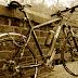 Tres años y medio de cárcel por robar una bicicleta
