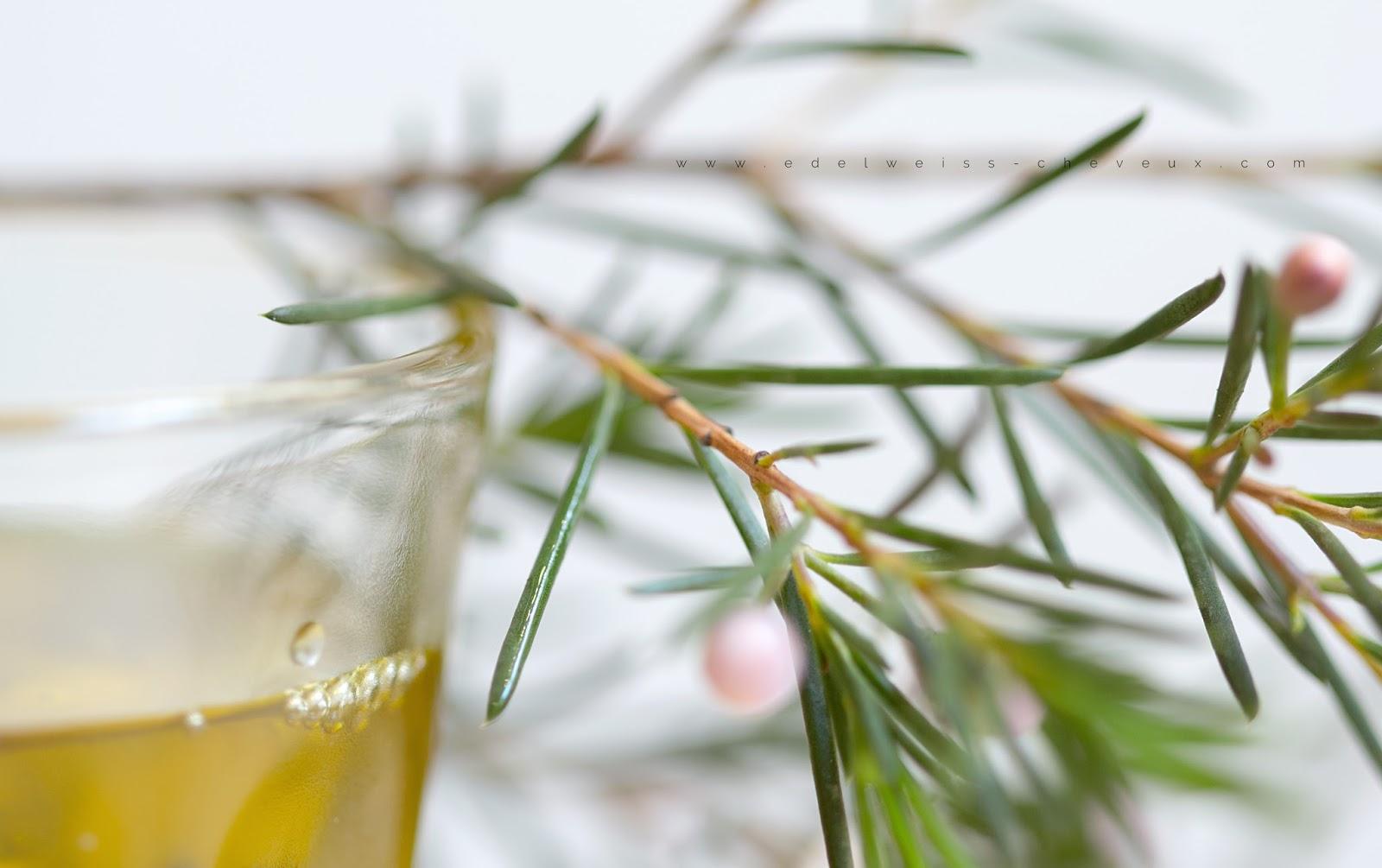 aroma zone huiles cheveux coco ricin moutarde jojoba