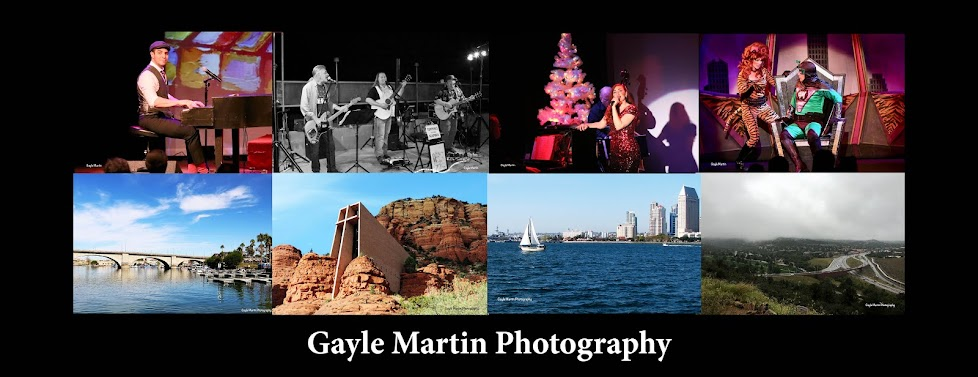 Gayle Martin Photography