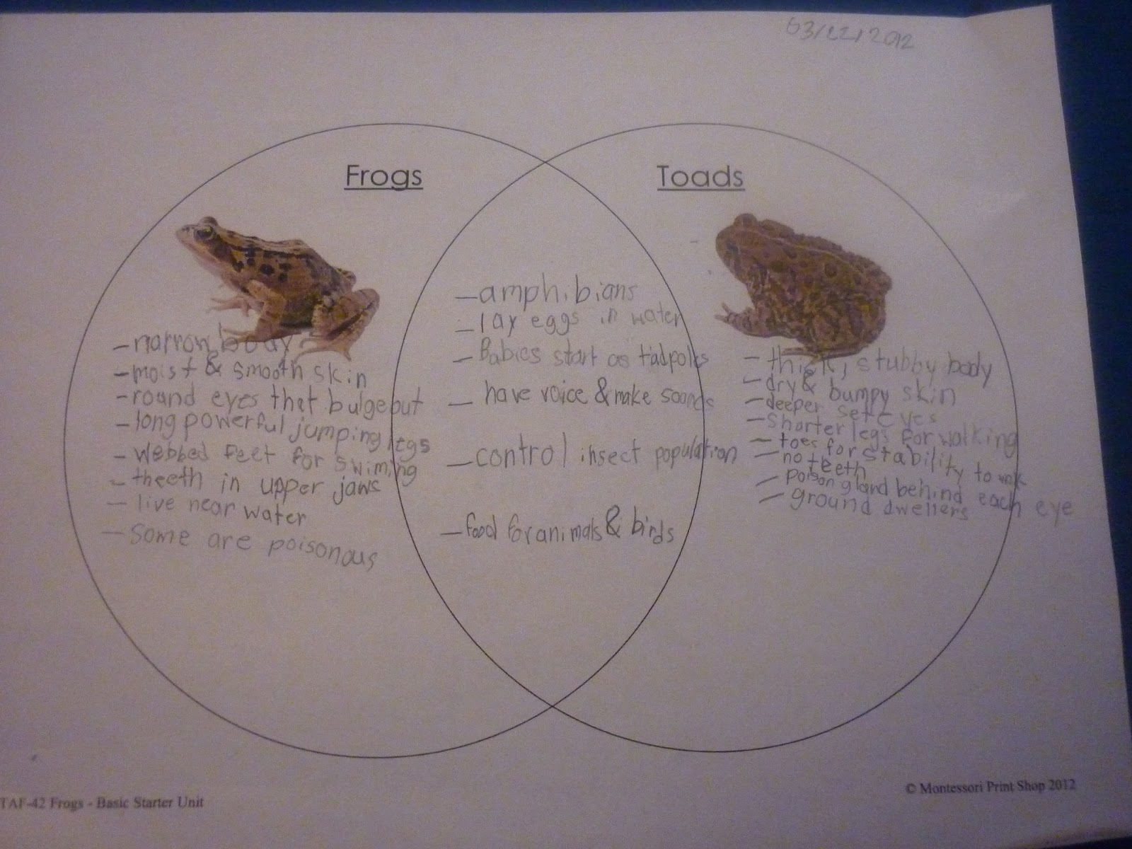 Frog And Toad Venn Diagram How To Draw A Car Wiring We Don 39t Need No Education Daily Report Lots Of Reading
