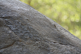 NATURAL TEXTURES by rock bokeh.jpg