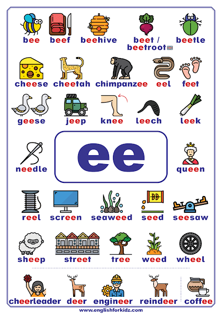 ee words - printable vowel teams poster - English phonics
