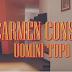 """CARMEN CONSOLI """"Uomini Topo"""" è il suo nuovo singolo"""