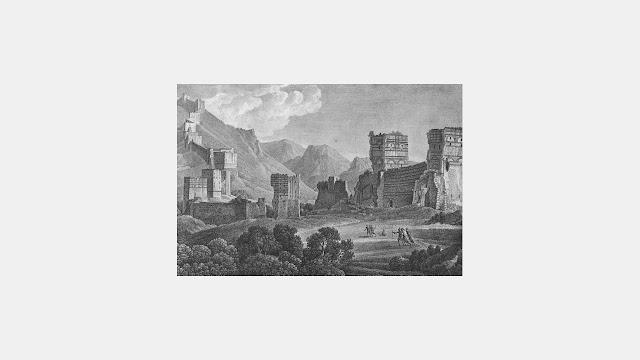 Anthurus d'Archer - Saltat Lethargicus