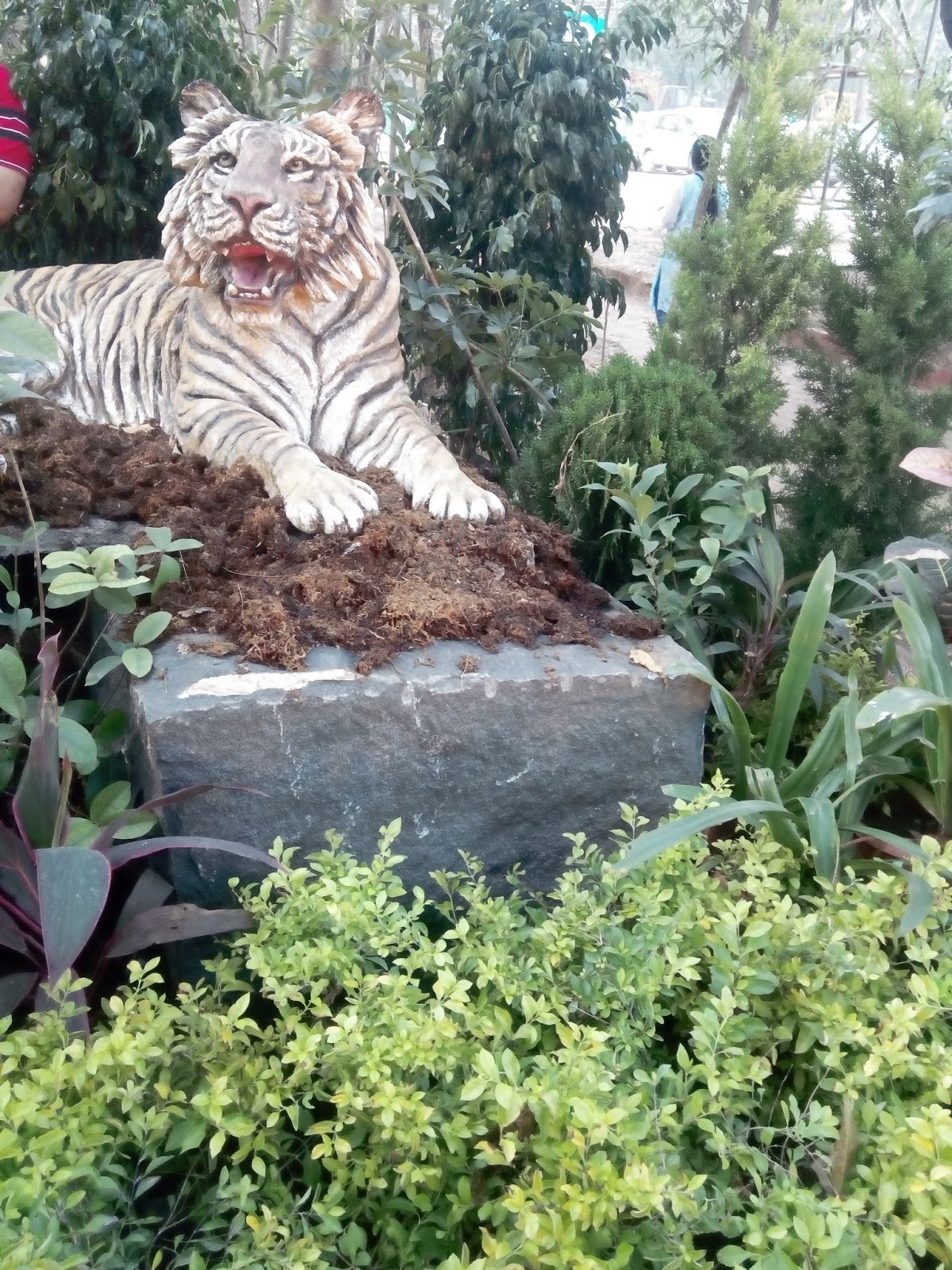 : Vaikunth Flower Show 2016 Balkum Thane Christmas Santa Clause, fun ...