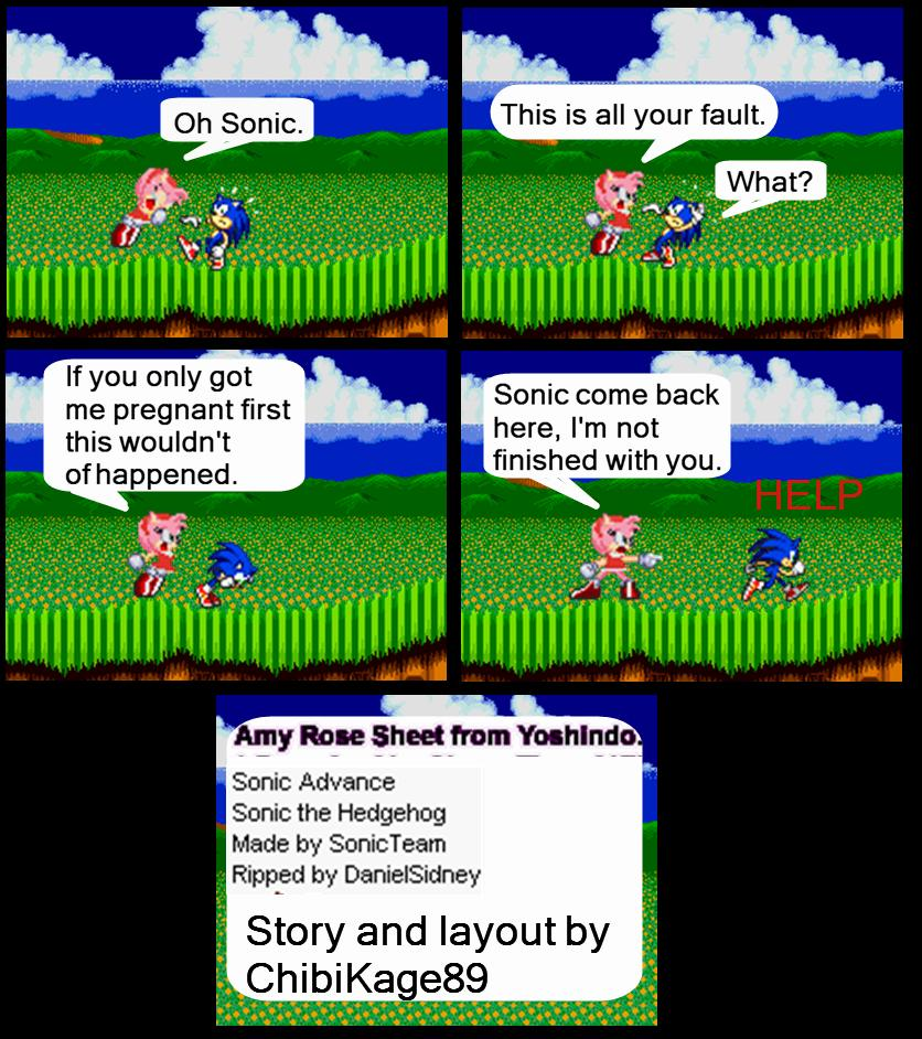 Fat Shadow Hedgehog Games Online