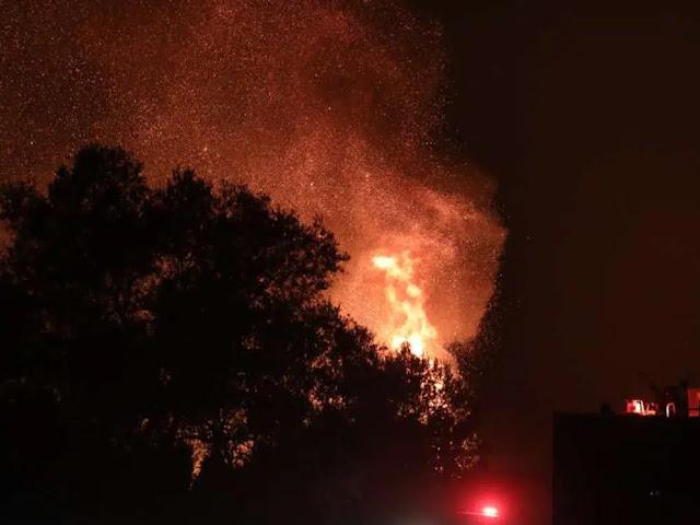 Πυρκαγιές: Καταγραφή των ζημιών και αναγκών στο ζωικό κεφάλαιο από την Περιφέρεια Πελοποννήσου