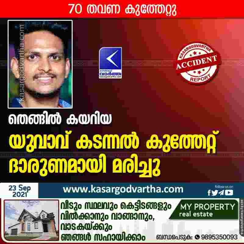 Mangalore, Karnataka, News, Obituary, Death, Youth, Bee-attack, Attack, Job, Coconut, Hospital, Top-Headlines, Young man died by stung of swarm of wasps.