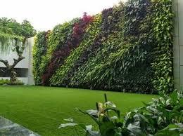 tukang_taman_vertikal_garden_sentul
