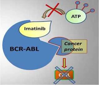 BCR ABL testi