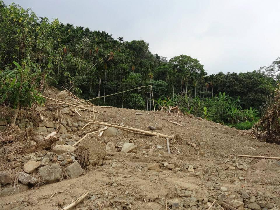 臺灣護樹團體聯盟: 檳榔樹與土石流