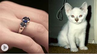 شركة تحول رماد الموتى إلى قطع الماس