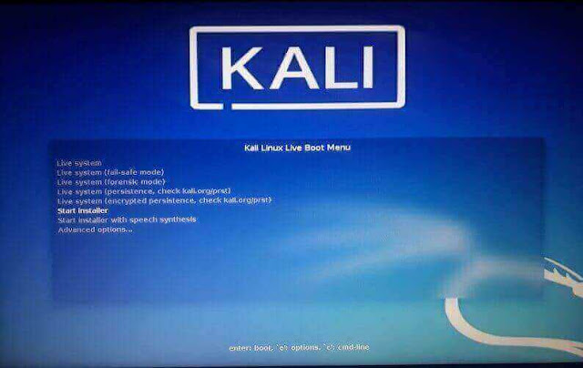 kali linux dual boot