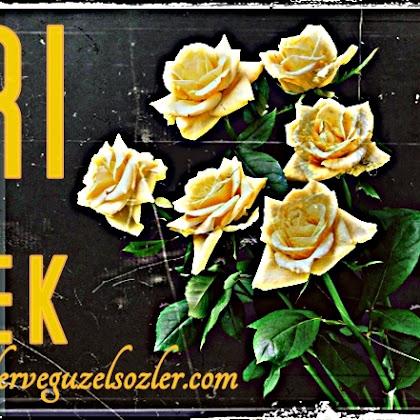 Sarı Çiçek - Şiirsel anlatım