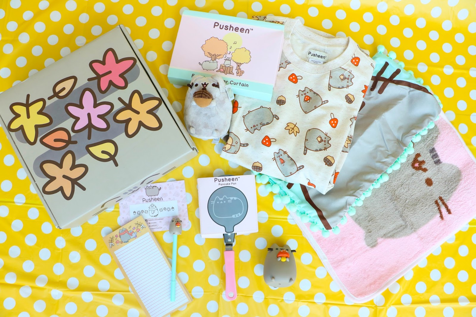 Unboxing the Fall 2017 Pusheen Box