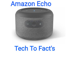 What is the price-review of Echo input portable smart speaker addition?