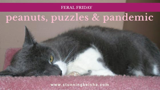 Feral Friday: Peanuts, Puzzles & Pandemic