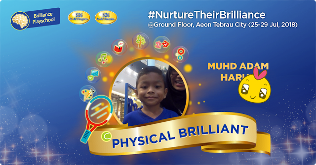 Wyeth Nutrition Brilliance Playschool