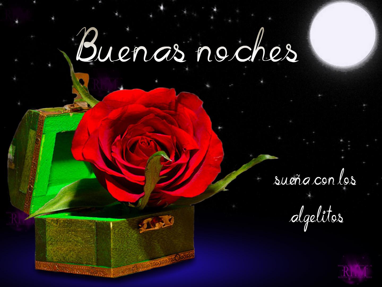 Best Imagen De Buenas Noches Amor Con Rosas Image Collection