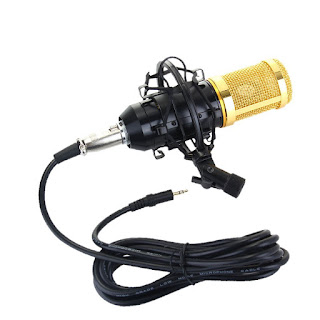 5 best mic for singer under 1000 rs.