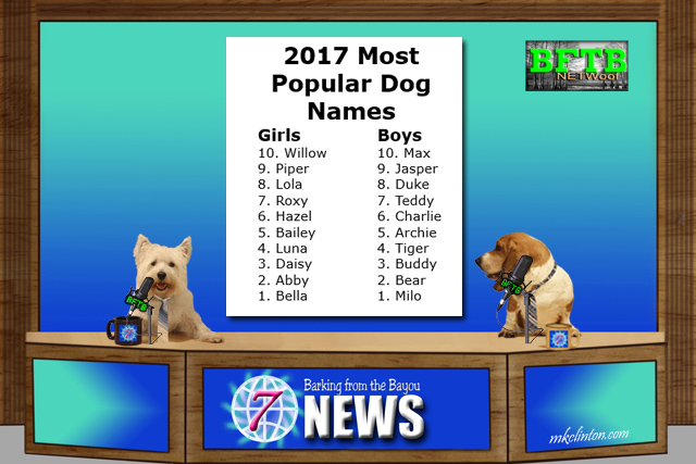 BFTB NETWoof News reports on top 10 dog names for 2017