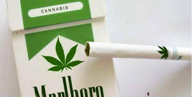 Marlboro-Marijuana