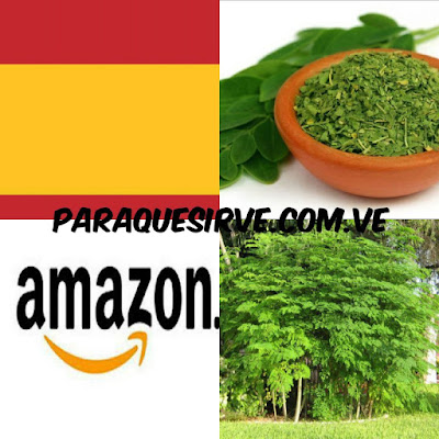 Comprar Moringa En España