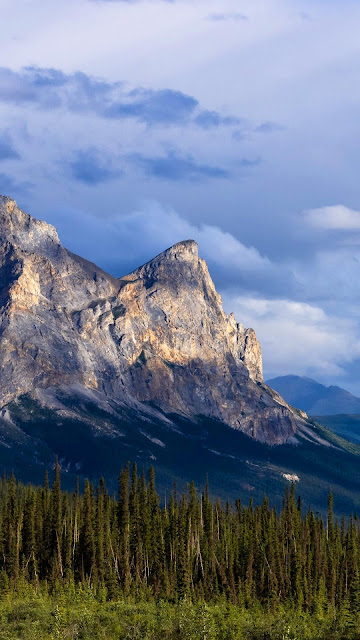 Wallpaper mountains, relief, forest, trees, landscape