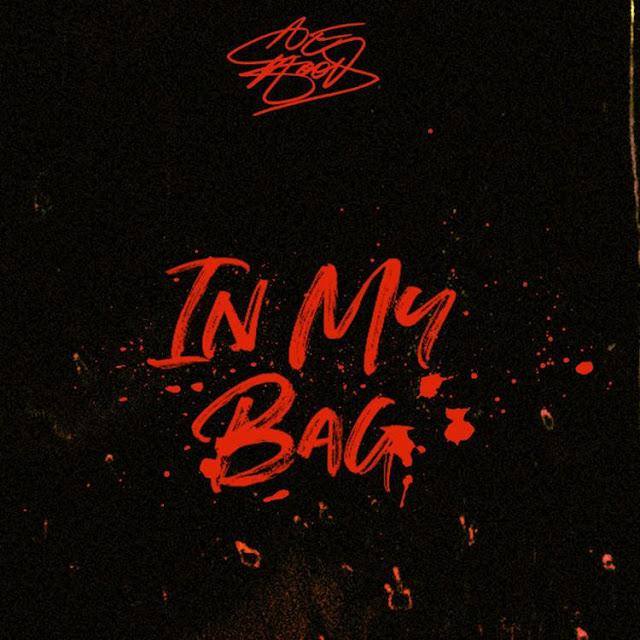 Ace Hood In My Bag