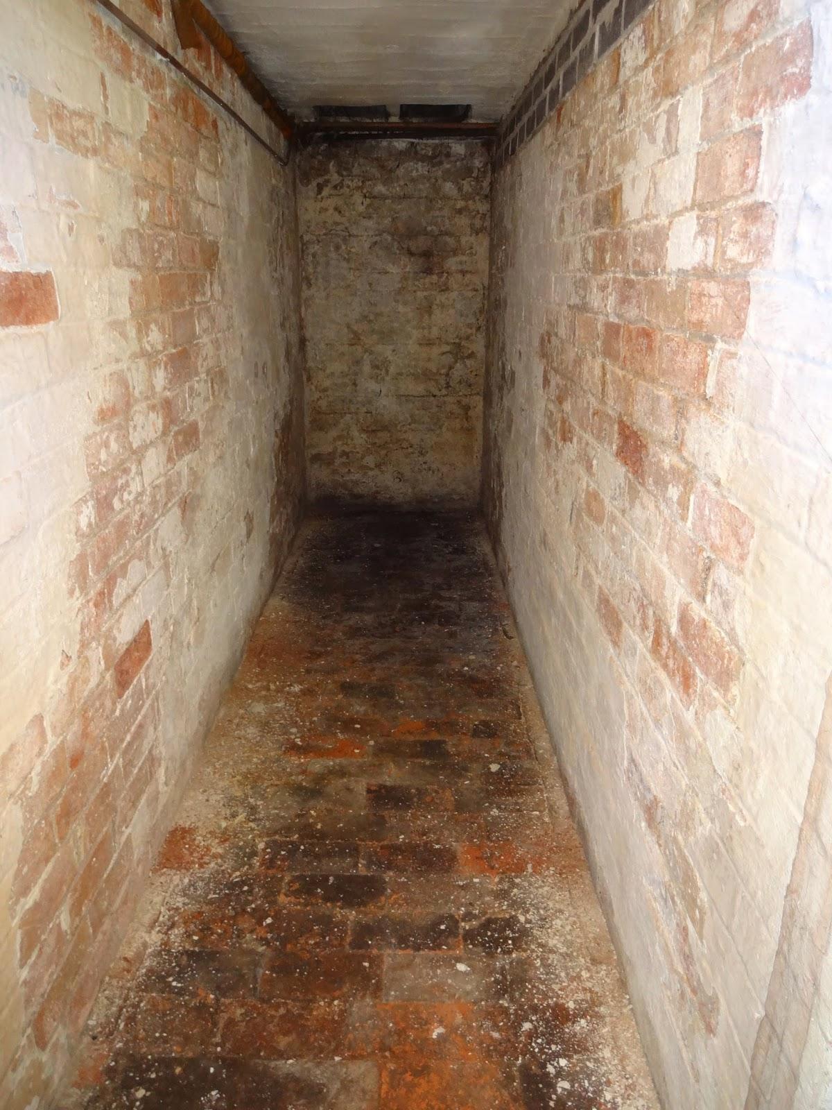 victorian cellar