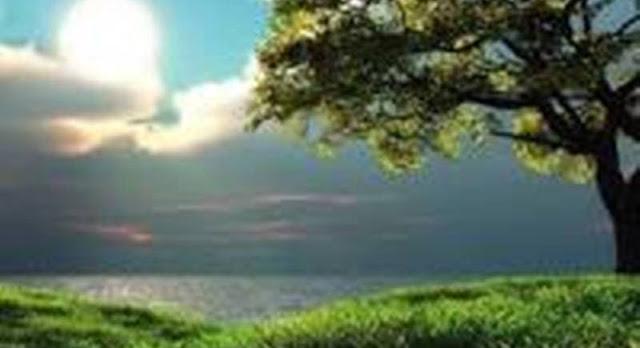 Manfaat Lingkungan Bagi Manusia