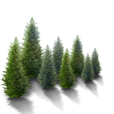 "Yosef -  ""Evergreen"" - GCR/RV Intel SITREP   8/6/17 Image1%2B%25281%2529"