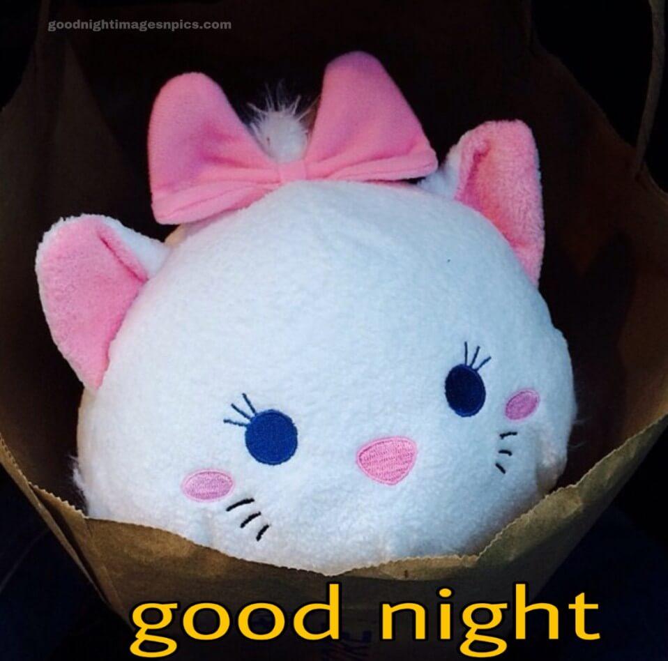 Cute Good night Image
