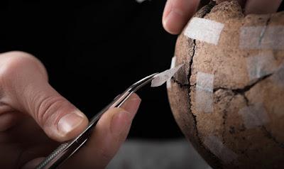 Σουηδοί αρχαιολόγοι ανακάλυψαν μια άγνωστη σφαγή του 5ου αιώνα μ.Χ.