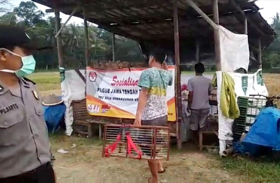 Belasan Pemuda di Petanahan Dibuarkan Polisi saat Bermain Merpati Kolong