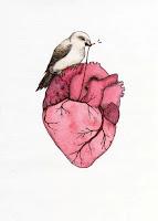 problemas de coração em mulheres
