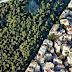 Επιστολή του Αναπληρωτή Υπουργού Σωκράτη Φάμελλου προς τους Δημάρχους για τους Δασικούς Χάρτες