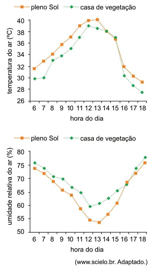 Analise os gráficos relativos ao cultivo de mudas da palmeira carnaúba hospedeira, Copernicia hospita