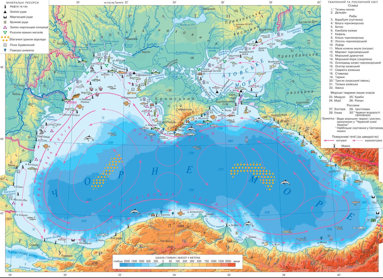 Доклад черное и азовское моря 6607