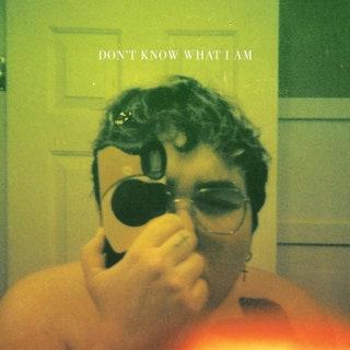 Alien Boy - Don't Know What I Am Music Album Reviews