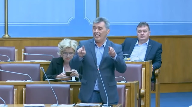 'Montenegro did not surrender to the Greater Albania project thanks to Serbs' Serb MP says