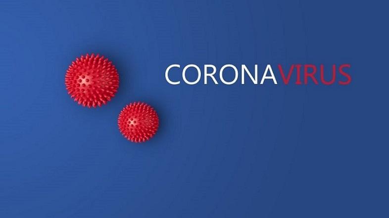 Apa Hubungan Wabah Corona Covid-19 dengan Perceraian? Belajar Sampai Mati, belajarsampaimati.com, hoeda manis