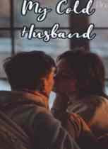 Novel My Cold Husband Karya Nur Laili Full Episode