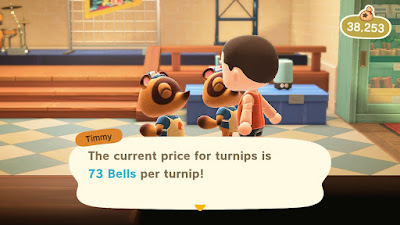Turnip Offer