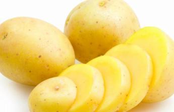 Manfaat Keju Rendah Lemak Untuk Diet