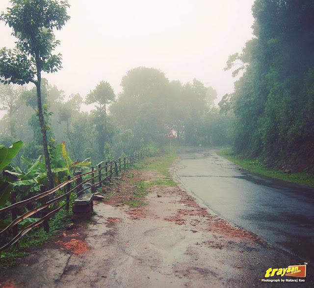 A rainy day in Coorg, Kodagu district of Karnataka