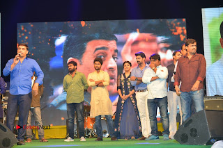 Nenu Local Audio Launch Stills  0367.JPG