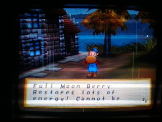 3 Rahasia Harvest Moon Save The Homeland