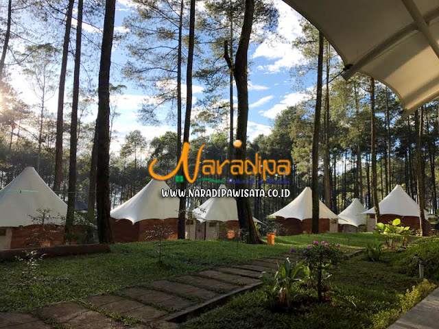 https://www.naradipawisata.co.id/2020/08/paket-wisata-grafika-cikole-lembang.html